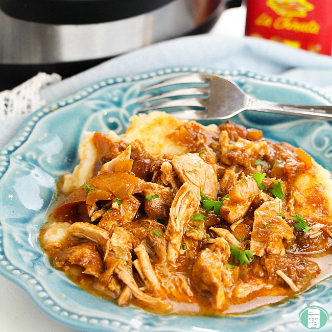 close up of chicken paprikash