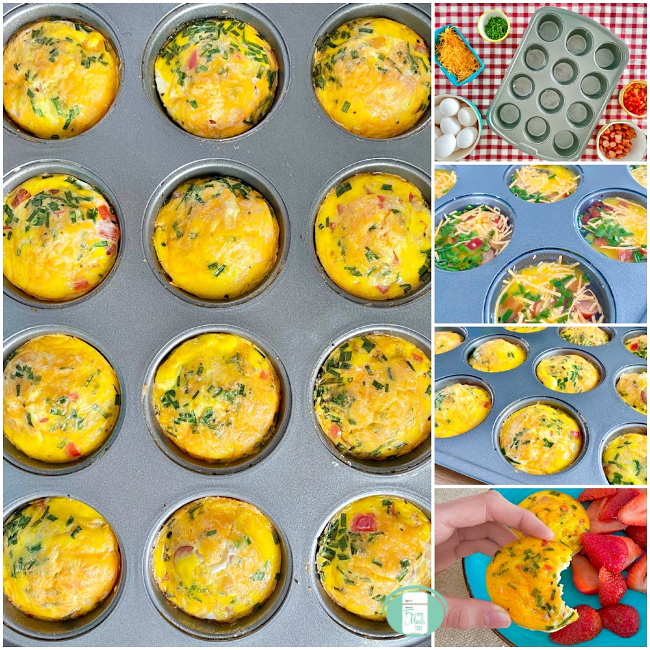 collage of scrambled egg bites being put together, in a muffin pan and one held up with a bite out of it