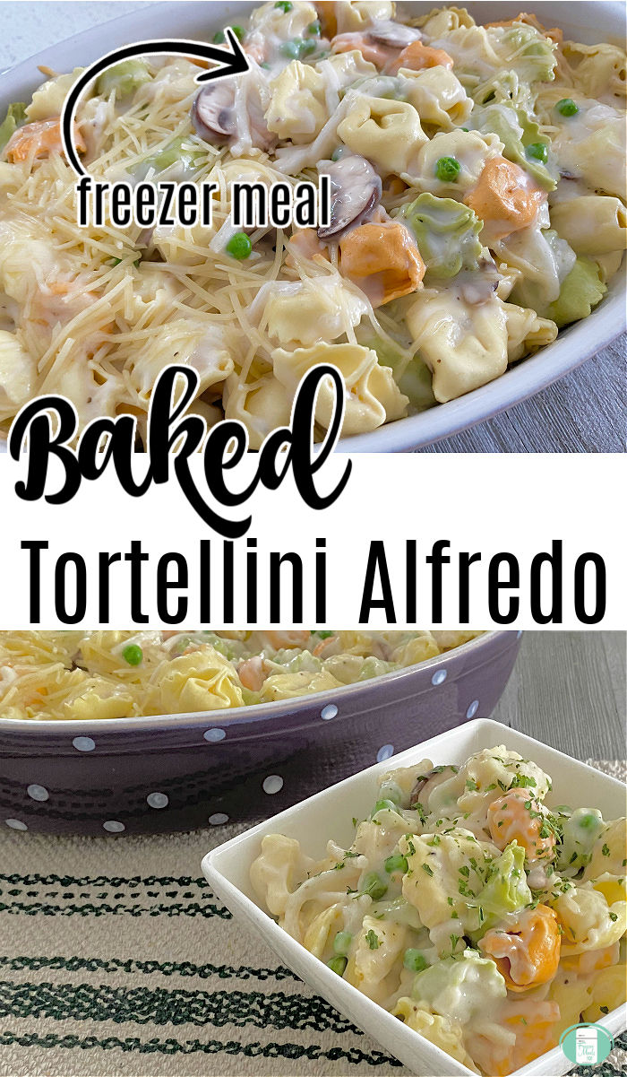 "oval casserole dish filled with tri colour tortellini in a white sauce with the words ""Baked Tortellini Alfredo"" #freezermeals101 #makeahead #Alfredofreezermeal #bakedfreezermeal #tortelliniAlfredo"